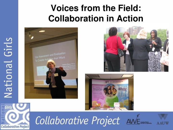 Voices from the Field:  Collaboration in Action