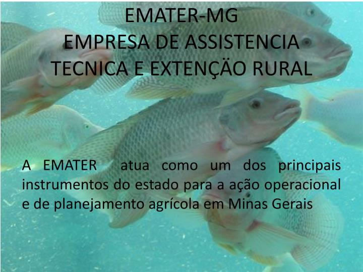 EMATER-MG