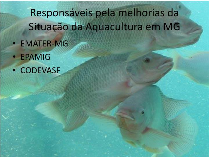 Responsveis pela melhorias da Situao da Aquacultura em MG