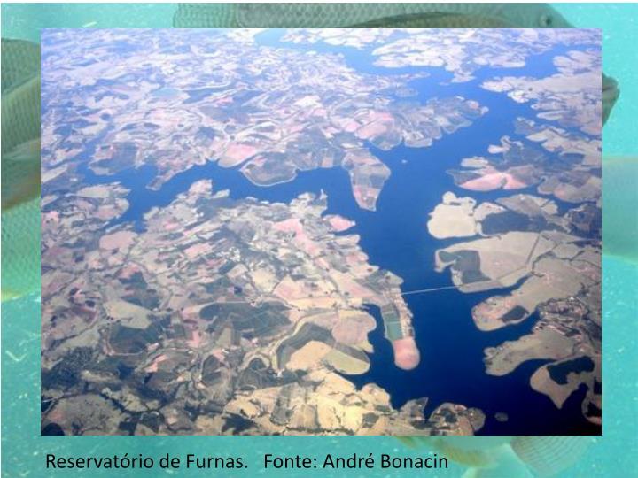 Reservatrio de Furnas.   Fonte: Andr Bonacin