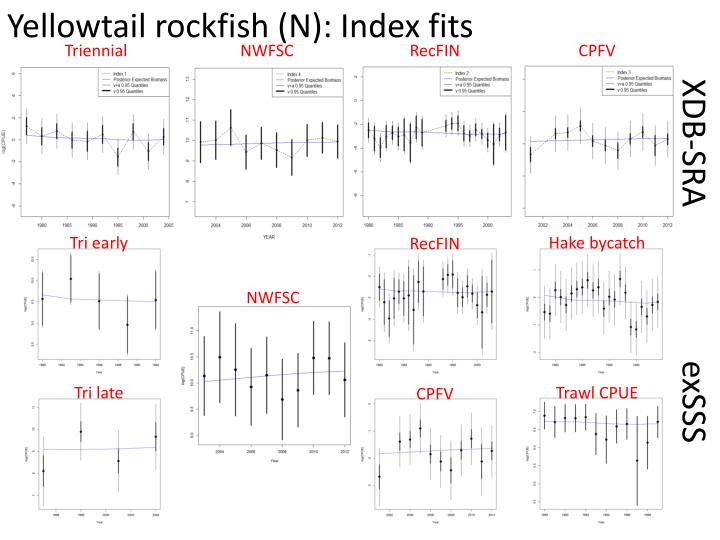 Yellowtail rockfish (N): Index fits