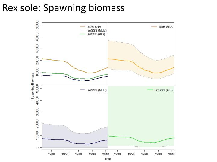 Rex sole: Spawning biomass