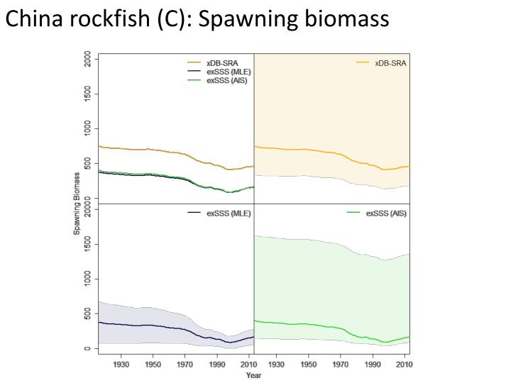 China rockfish (C): Spawning biomass