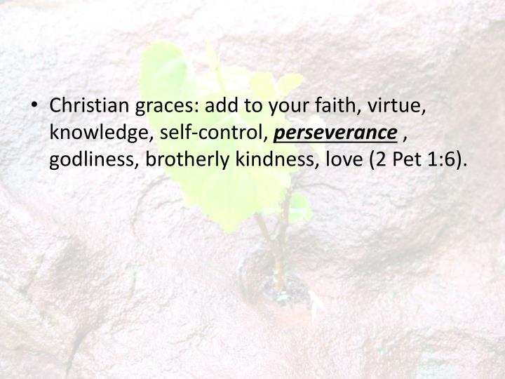Christian graces: add to your faith, virtue, knowledge, self-control,