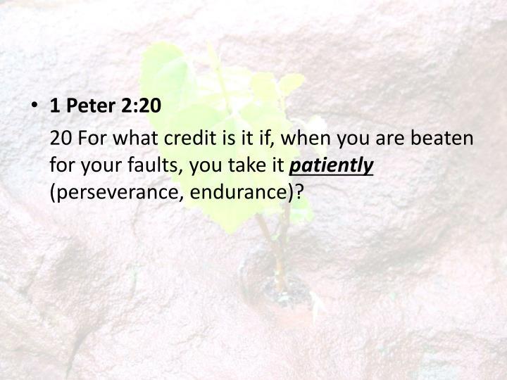 1 Peter 2:20