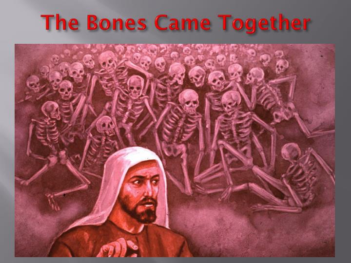 The Bones Came Together