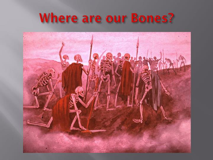 Where are our Bones?