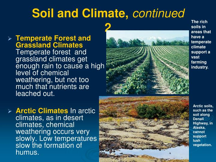 Ppt weathering and soil formation powerpoint for Soil 4 climate