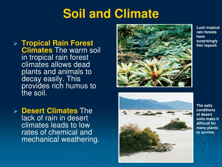 Soil formation climate the image kid for Where do we find soil