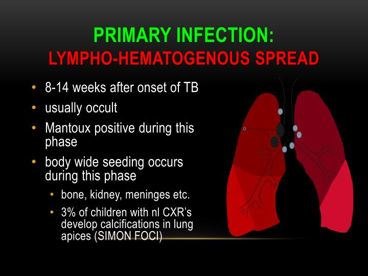 Primary infection lympho hematogenous spread