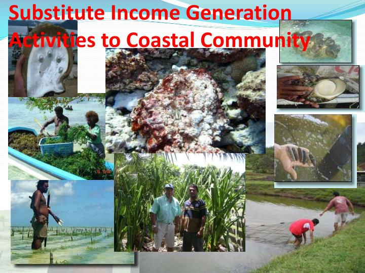 Substitute Income Generation Activities to Coastal Community