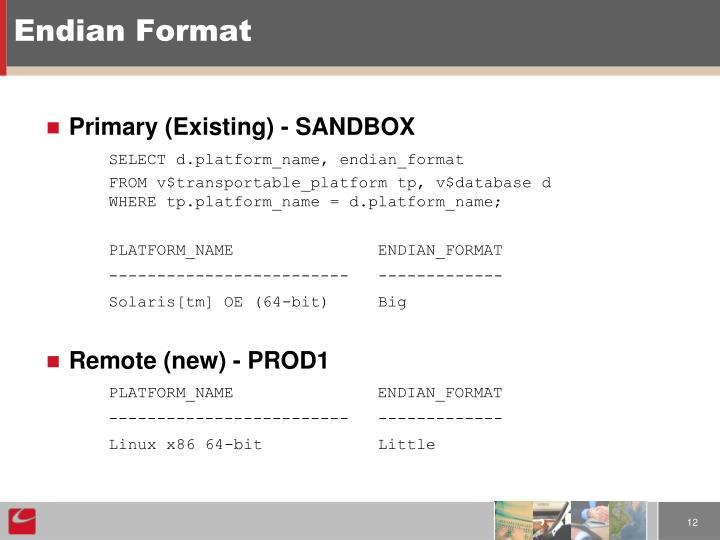 Endian Format