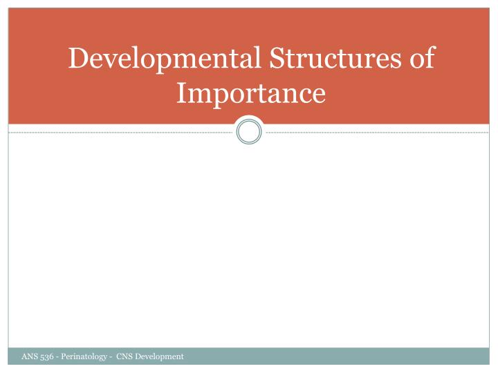 Developmental Structures of Importance