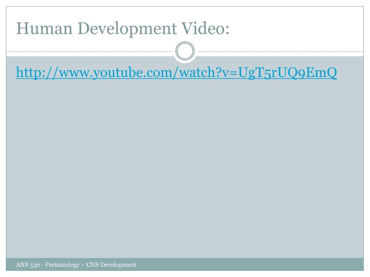 Human Development Video: