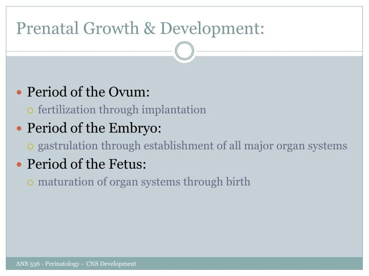 Prenatal Growth & Development: