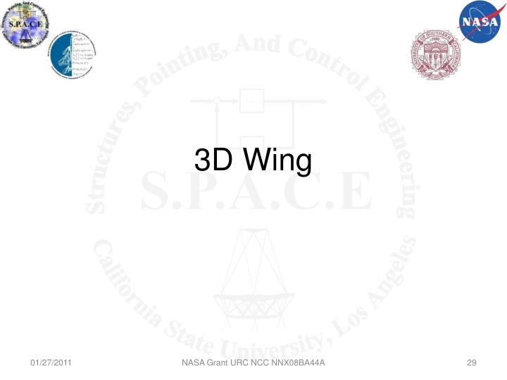 3D Wing