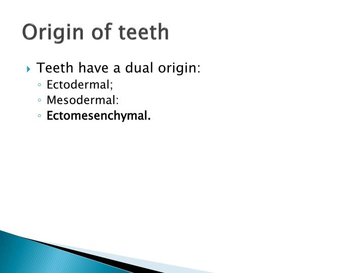 Origin of teeth