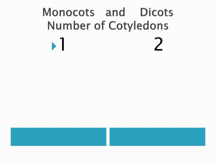 Monocots   and