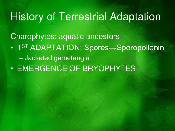 History of Terrestrial Adaptation