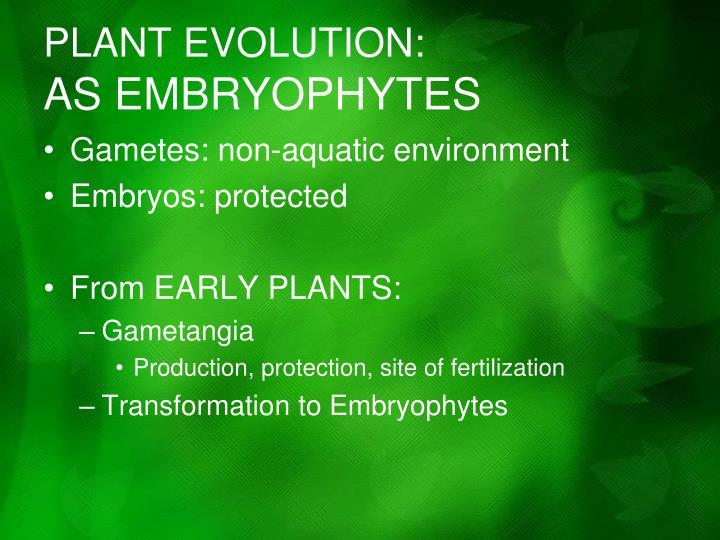 PLANT EVOLUTION: