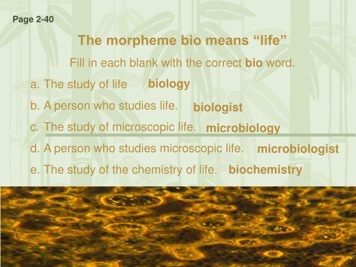 Biology: The Study of Life - Video & Lesson Transcript ...
