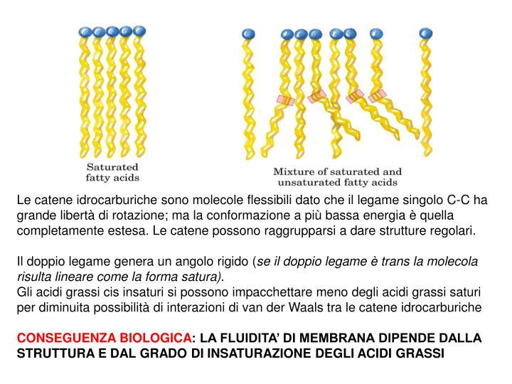 Le catene idrocarburiche sono molecole flessibili dato che il legame singolo C-C ha grande libertà di rotazione; ma la conformazione a più bassa energia è quella completamente estesa. Le catene possono raggrupparsi a dare strutture regolari.