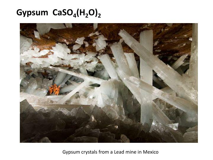 Gypsum  CaSO