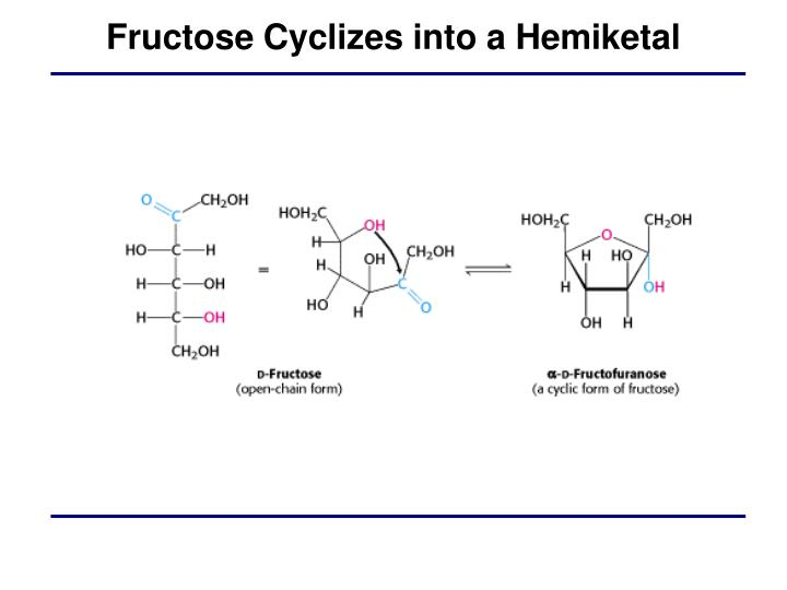Fructose Cyclizes into a Hemiketal