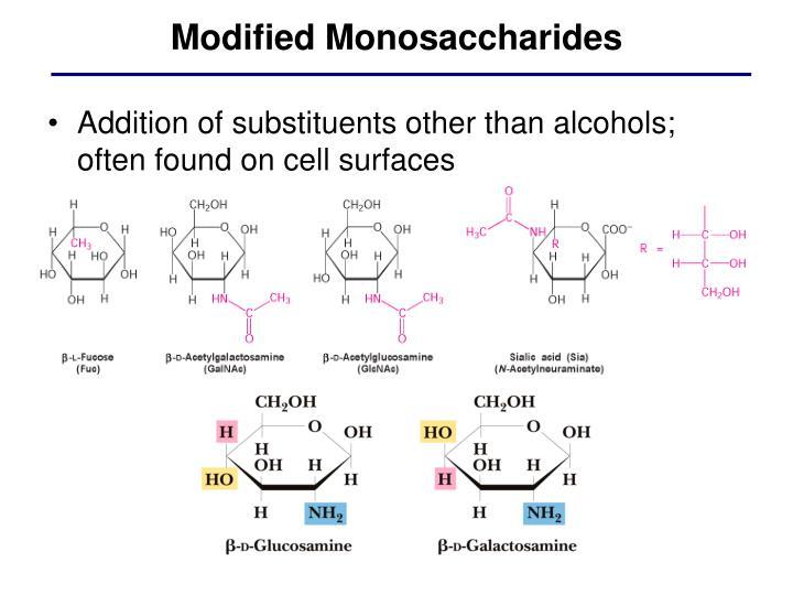 Modified Monosaccharides