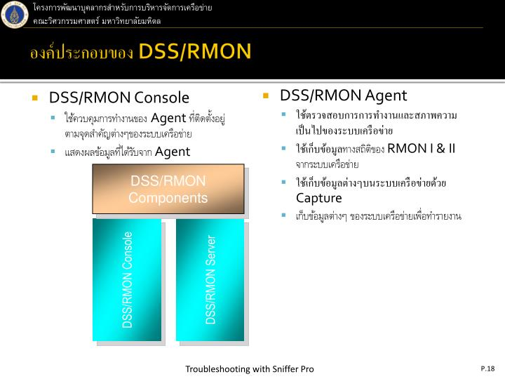 DSS/RMON Console