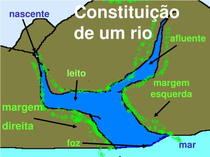 Constituição de um rio