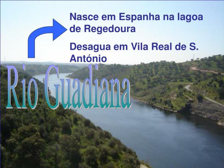 Nasce em Espanha na lagoa de Regedoura