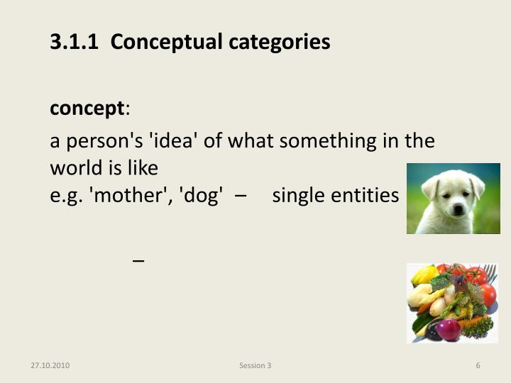 3.1.1  Conceptual categories
