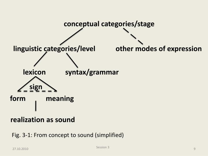 conceptual categories/stage