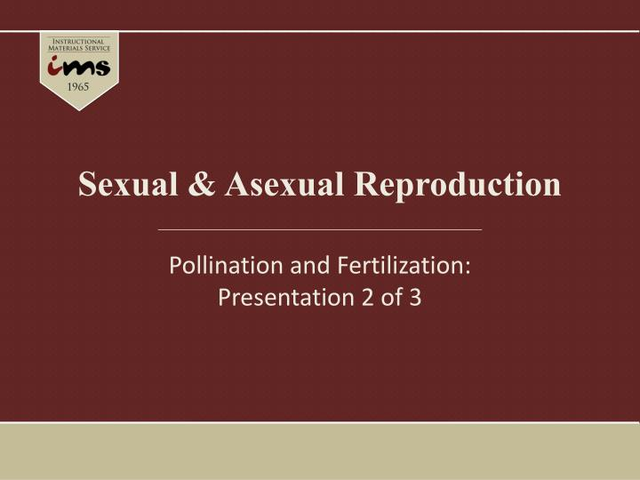 Sexual asexual reproduction