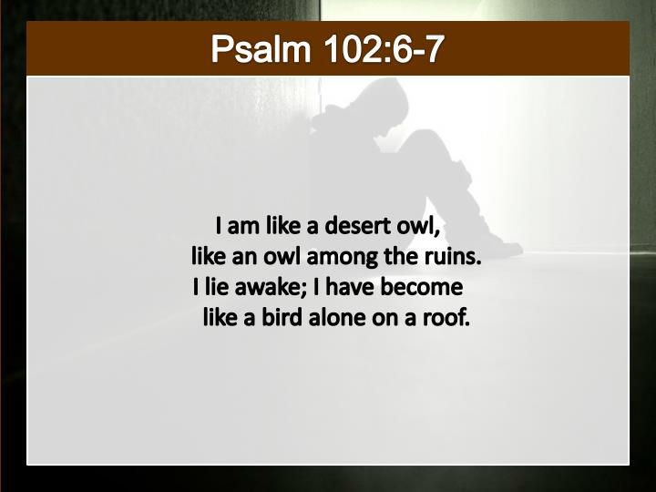 Psalm 102:6-7