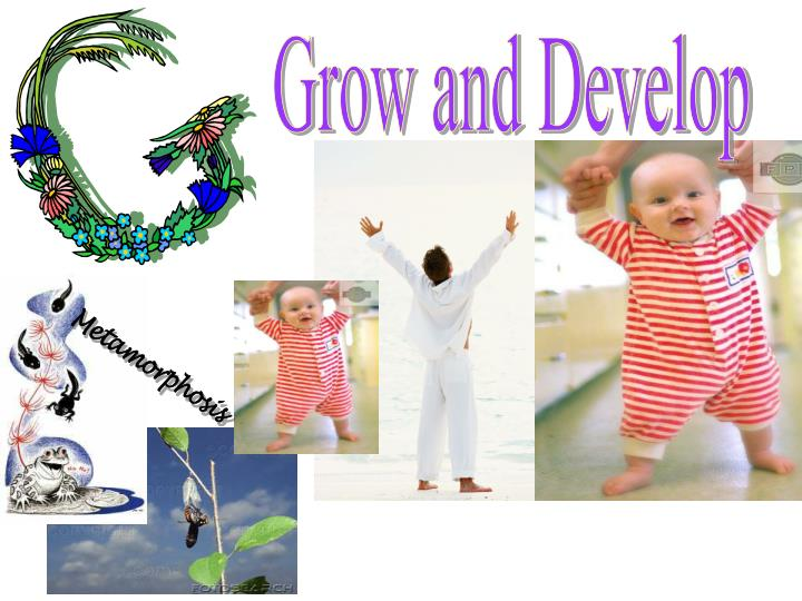 Grow and Develop