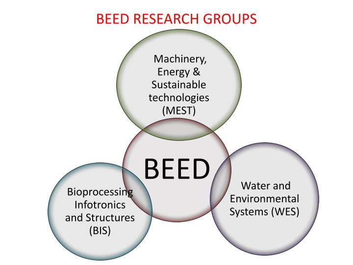 BEED RESEARCH GROUPS