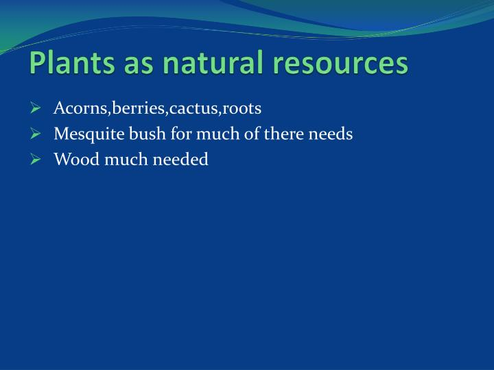 What Are Some Natural Resources In California