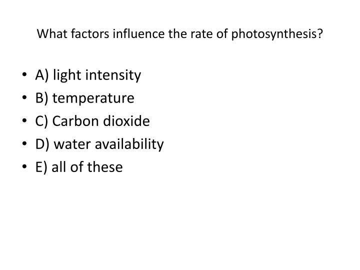 What factors influence the rate of photosynthesis?