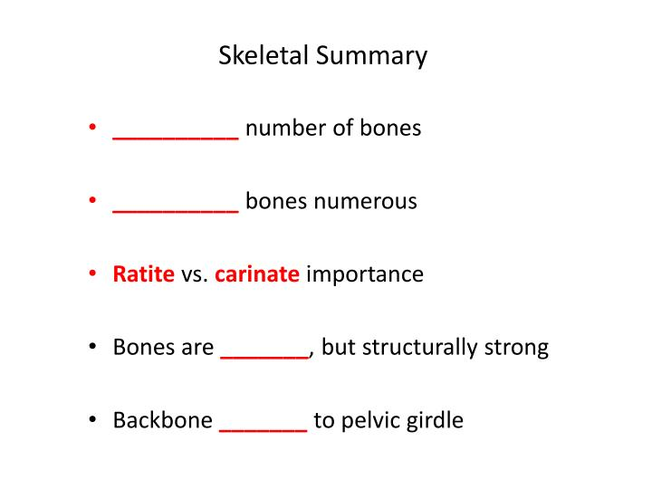 Skeletal Summary
