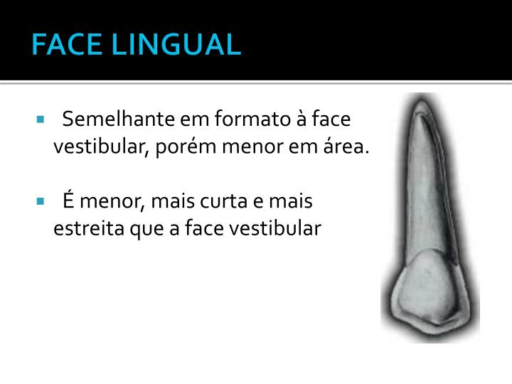 FACE LINGUAL