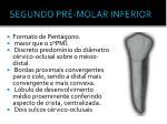 segundo pr molar inferior