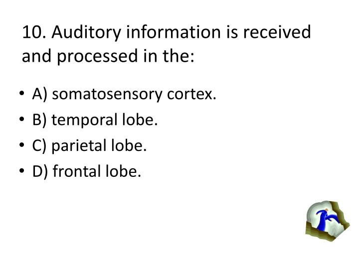 10. Auditory information is received and processed in the: