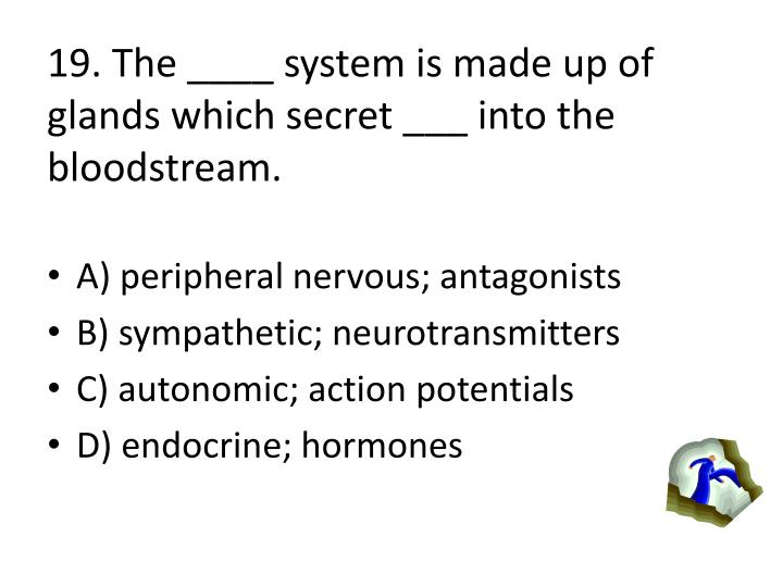19. The ____ system is made up of glands which secret ___ into the bloodstream.