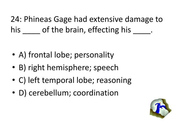 24: Phineas Gage had extensive damage to his ____ of the brain, effecting his ____.