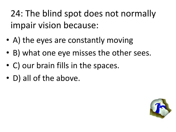 24: The blind spot does not normally impair vision because: