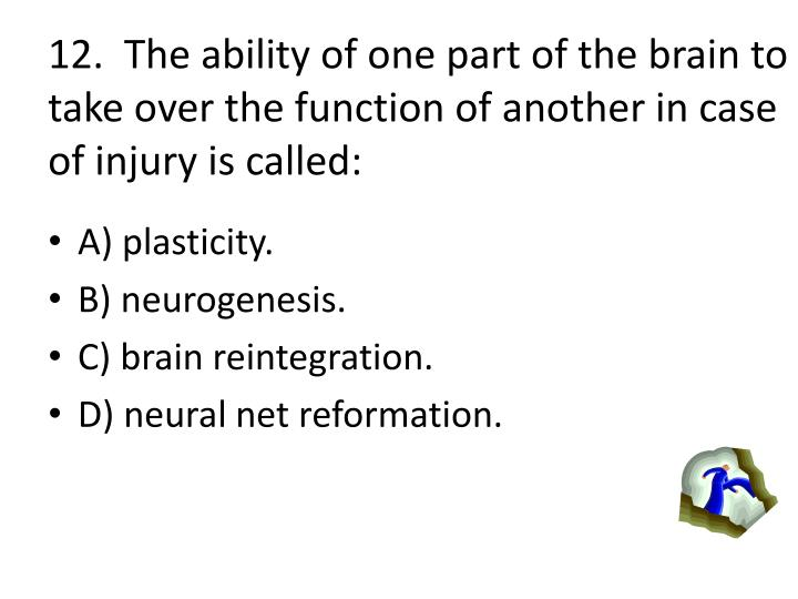 12.  The ability of one part of the brain to take over the function of another in case of injury is called: