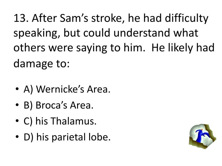 13. After Sams stroke, he had difficulty speaking, but could understand what others were saying to him.  He likely had damage to: