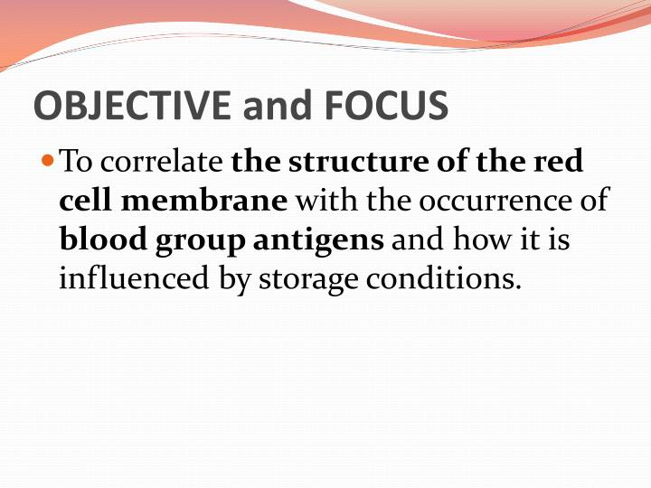 OBJECTIVE and FOCUS